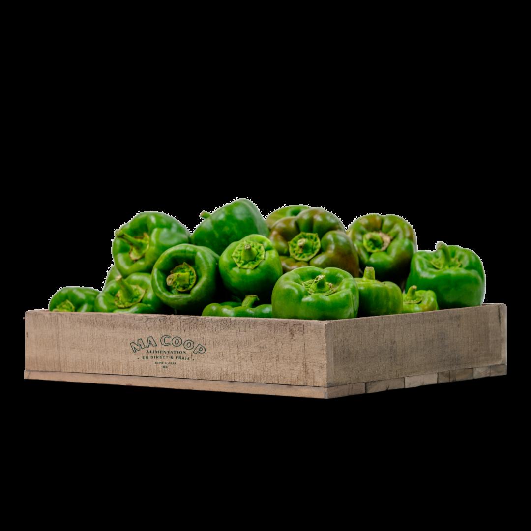 poivrons vert