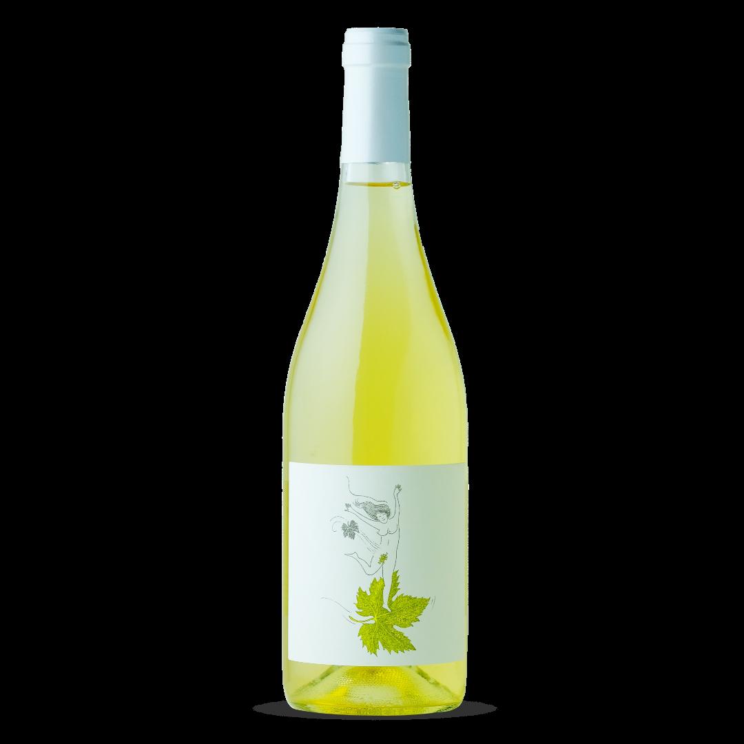 vin blanc le vent se leve domaine eole