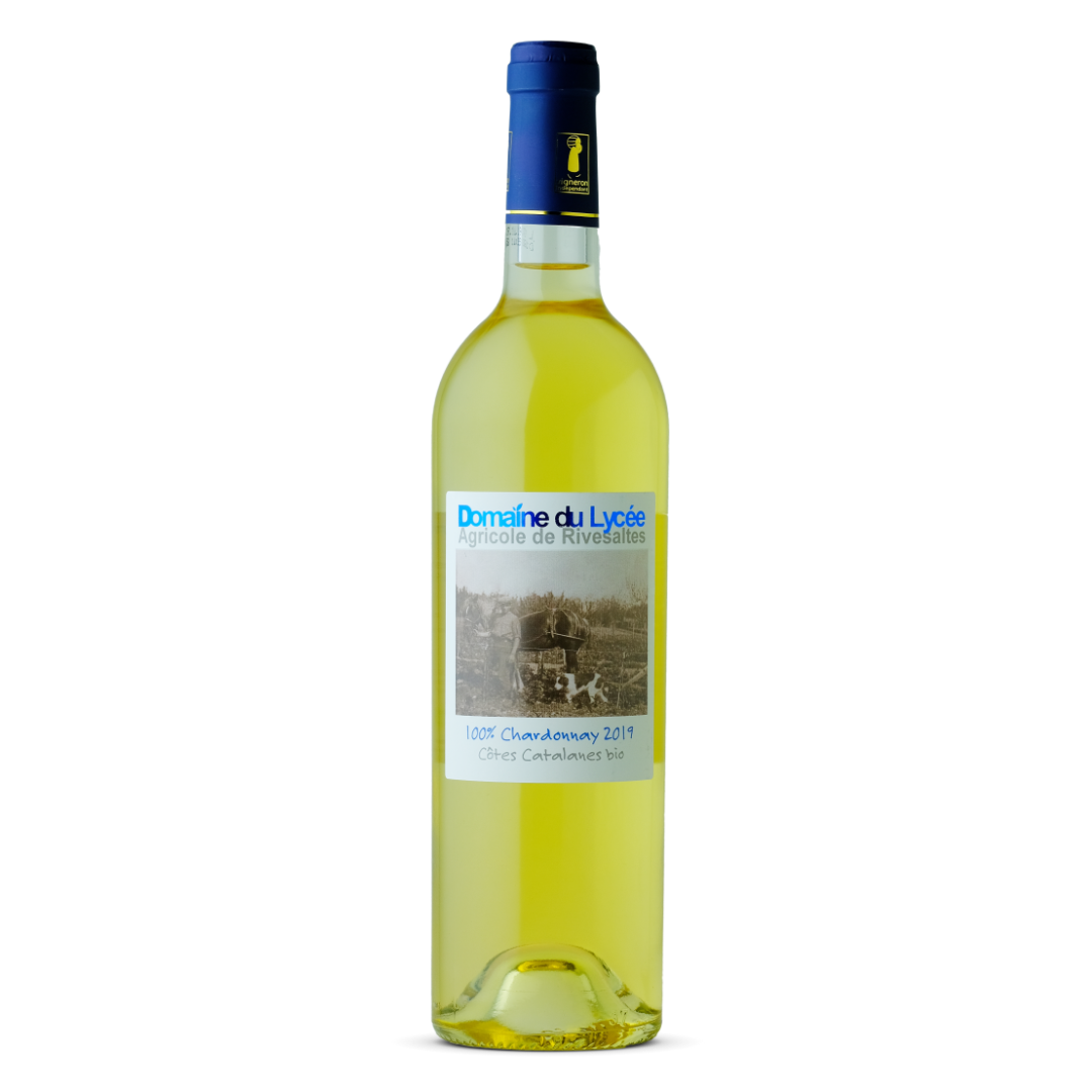 vin blanc chardonnay 2019 domaine du lycée