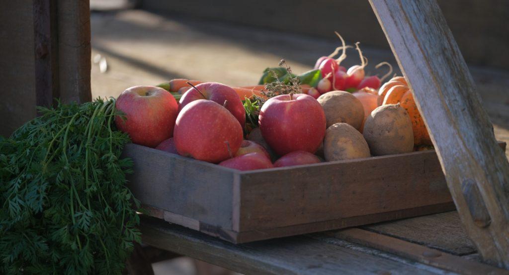 panier de fruits et légumes de la semaine composé des produits des producteurs locaux