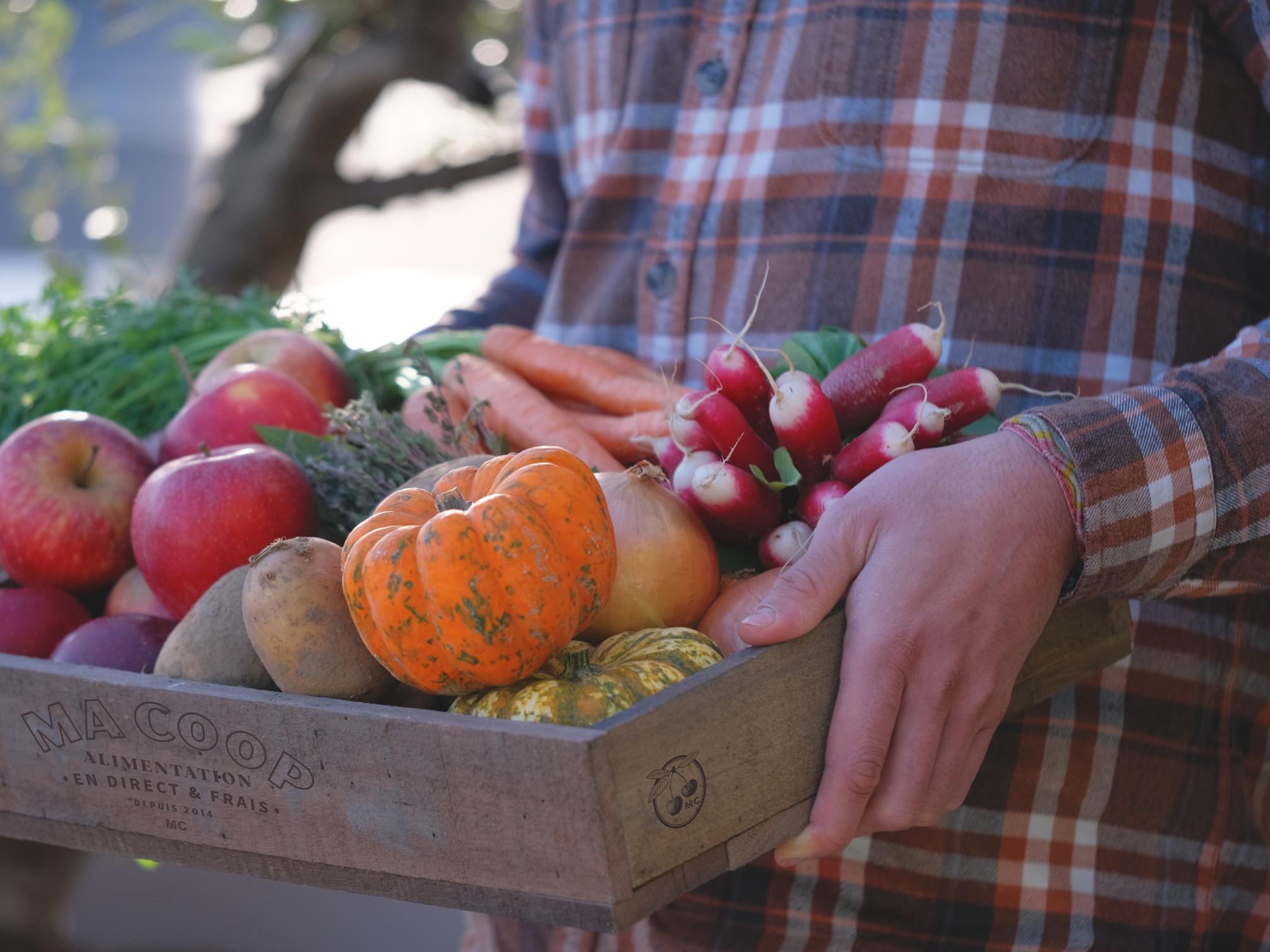 producteur tenant un panier de la semaine composé de produits locaux 100% terroir